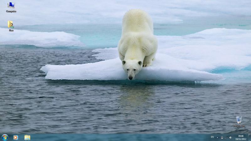 Тема Polar Bears