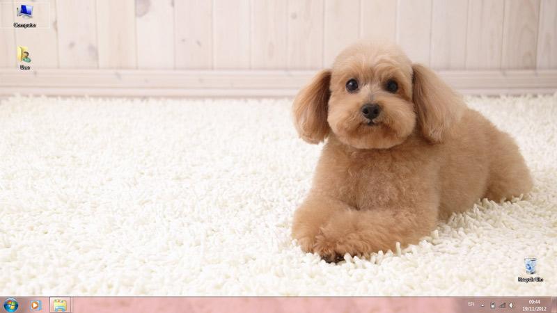 Тема Puppies