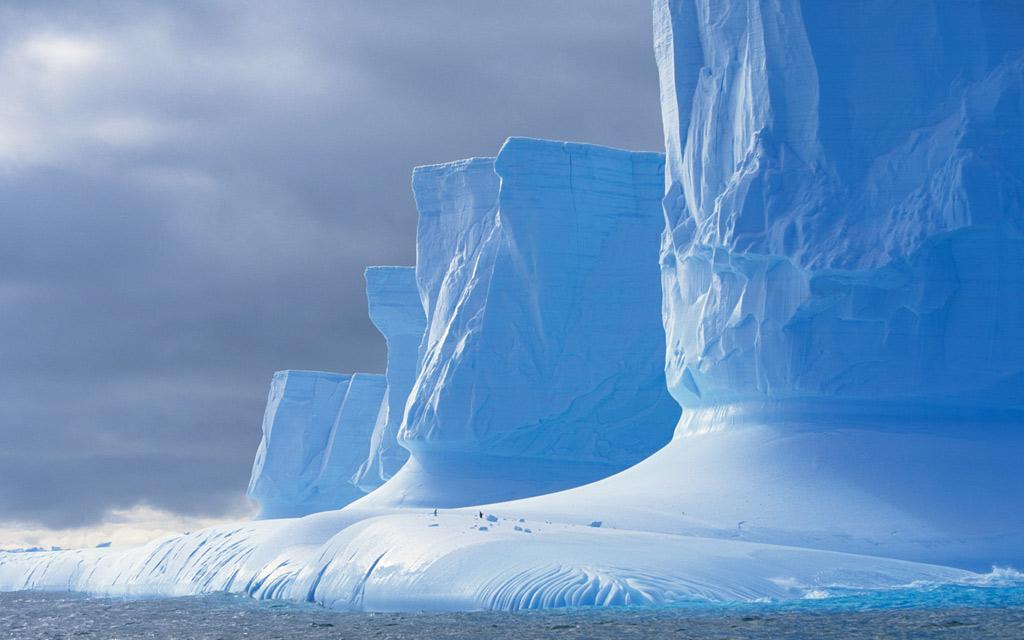 Тема Antarctic