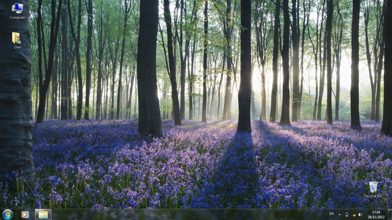 Тема Forests