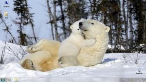 Тема Furry Families