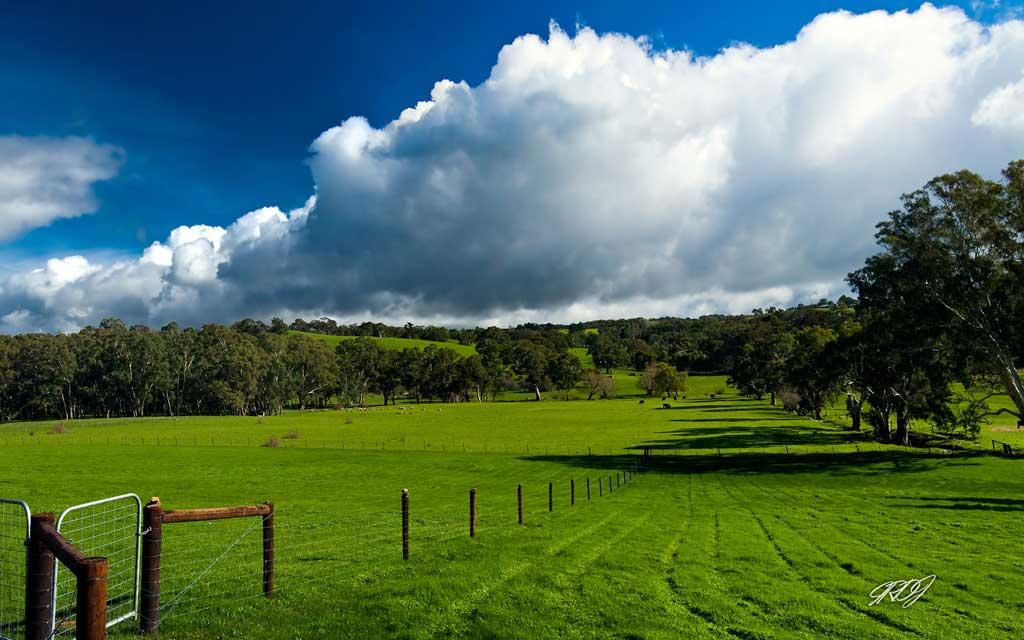 Тема Australian Landscapes