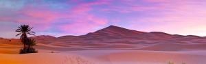 Panoramic Deserts